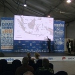 Moscow Dive Show 2018_1